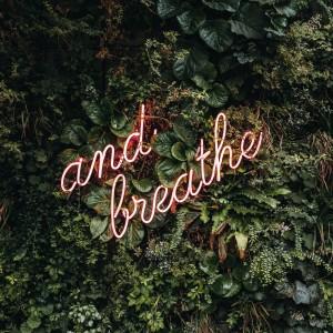 Fun, Focus, Ease, and Breathe